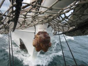 Sir Joseph Banks Islands Discovery Voyage @ Brennen Wharf | South Australia | Australia